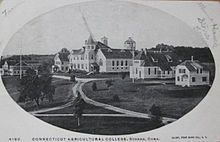 University of Connecticut - 1903