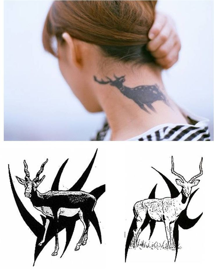 45 best Tangled Antler Tattoo images on Pinterest | Antler ...
