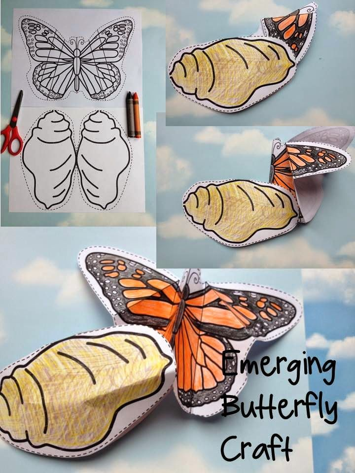 Emerging Butterfly Craft by Robin Sellers
