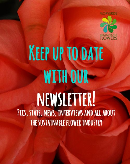 Every month we highlight the latest news in the sustainable flowers industry, join us http://eepurl.com/bp4JEr