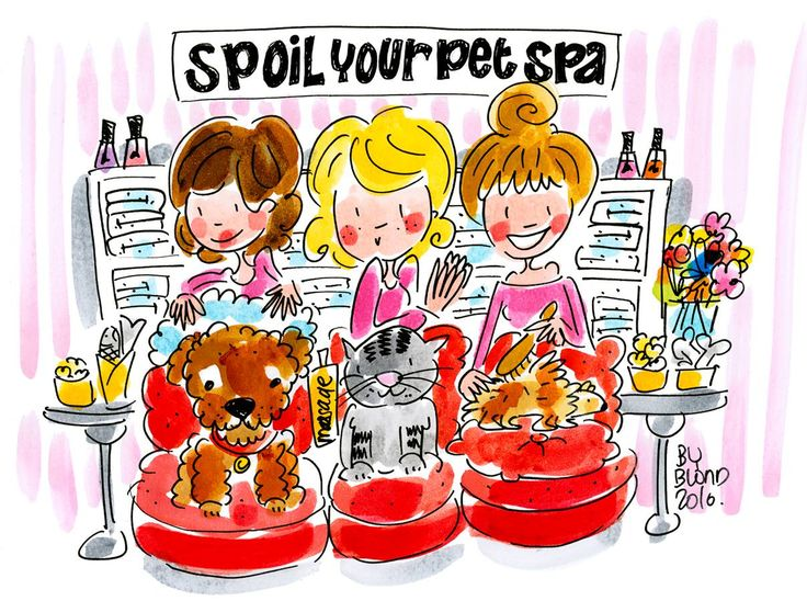 Spoil your pet spa day! by Blond-Amsterdam