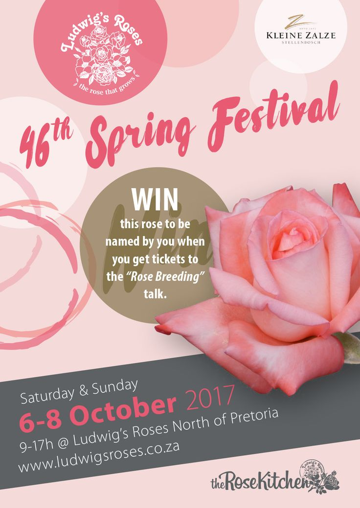 this year we have a special show just for you!  get your tickets here: http://www.ludwigsroses.co.za/event/ludwigs-roses-46th-spring-festival-6-8-oct-2017/?utm_content=bufferd11f4&utm_medium=social&utm_source=pinterest.com&utm_campaign=buffer