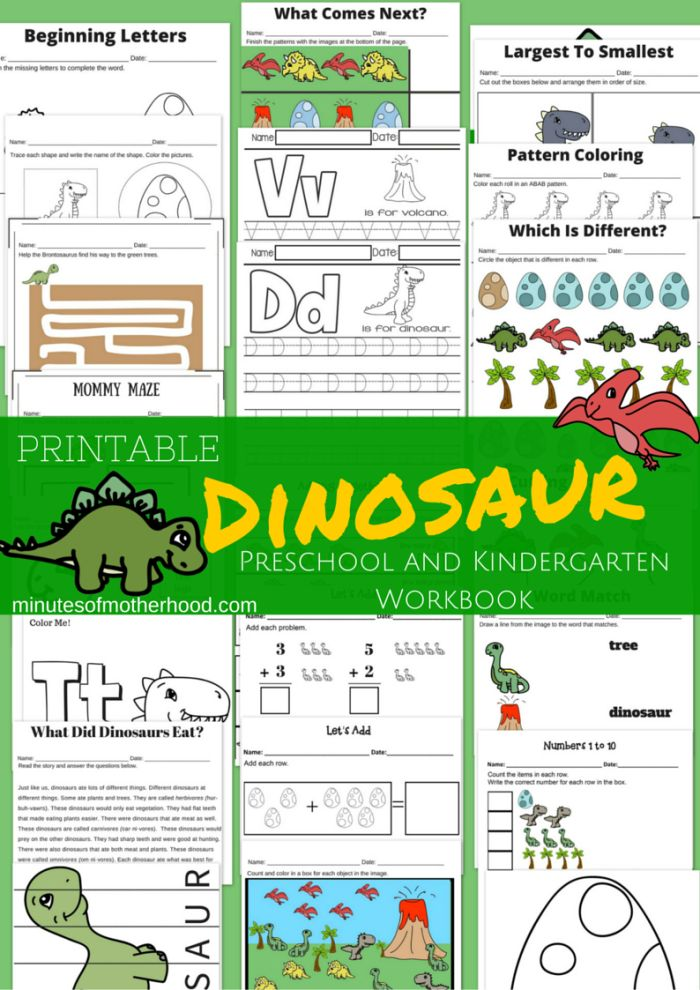 20+ Page Dinosaur Themed Free Printable Preschool and Kindergarten Workbook Continuing our dino themed week with this 20+ page dinosaur workbook. There are several different activities and workshee…