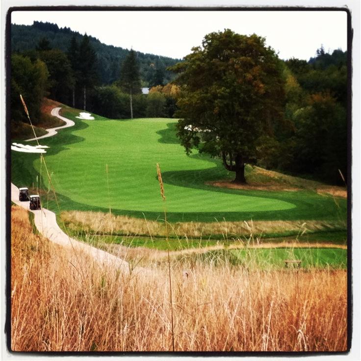 The par 5 1st hole at Salish Cliffs Golf Course in Shelton, WA.