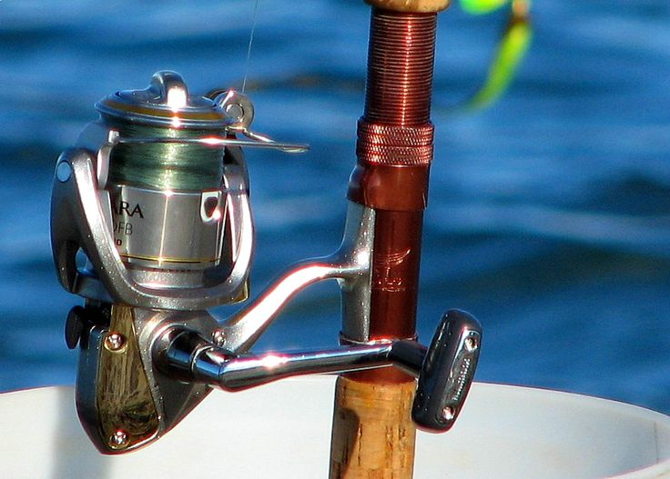 What is the Best Fishing Reel?