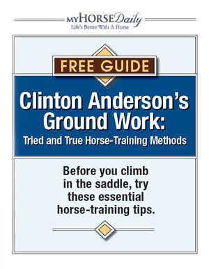 Clinton Anderson's Ground Work - Improve your horsemanship with ground work
