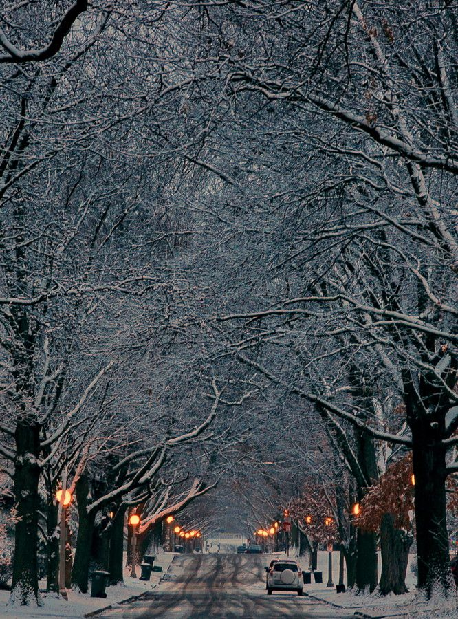Champaign Illinois, my hometown, it is small and unnoticed, and beautiful in the winter.