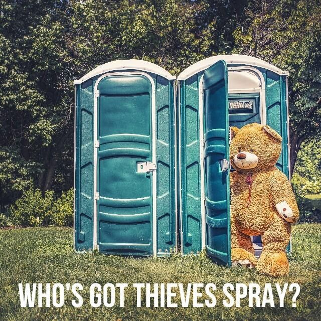 Thieves spray by Young Living essential oils is great for all kinds of odors