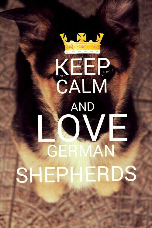How Do I Spell Good Morning In German : Best images about keep calm and on pinterest