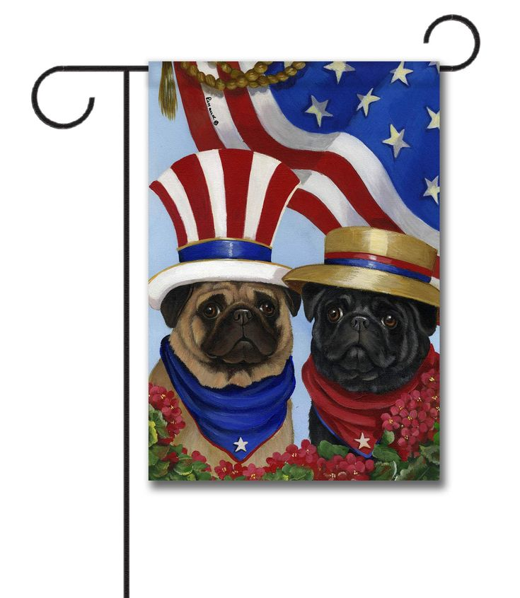 43 Best Patriotic And Military Flags Images On Pinterest Door Rugs