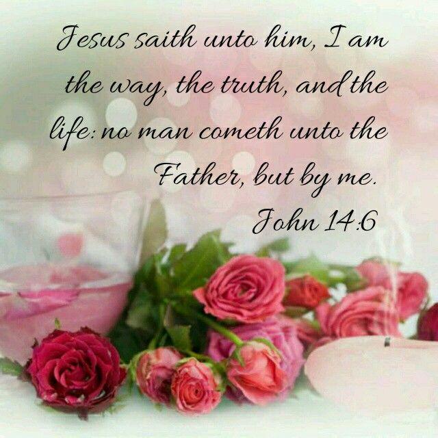 gospel of john niv pdf