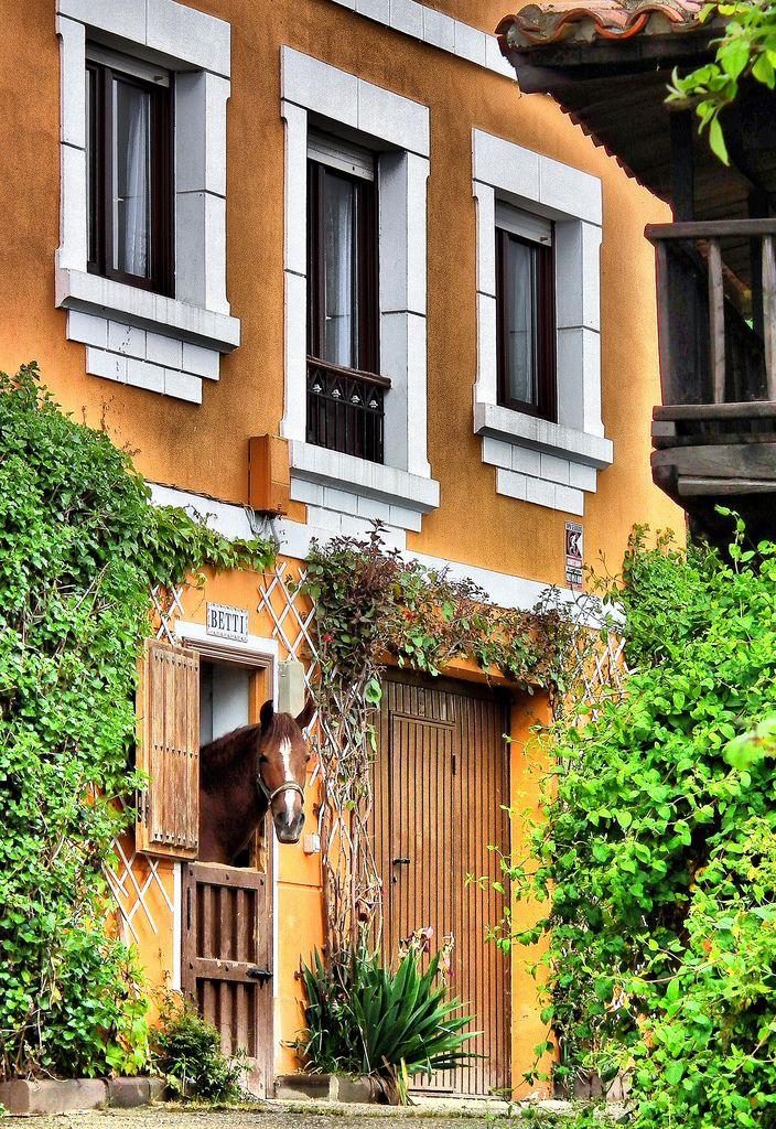 Casas De Decoracion En Caballito ~ M?s de 1000 im?genes sobre Rustico en Pinterest  Espa?ol, Adobe y