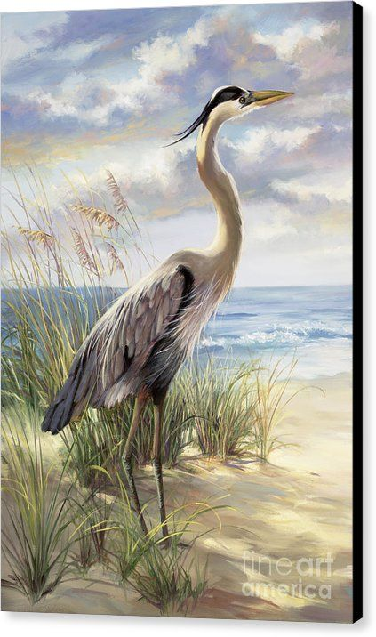 Blue Heron Deux Canvas Print by Laurie Hein.  All canvas prints are professionally printed, assembled, and shipped within 3 - 4 business days and delivered ready-to-hang on your wall. Choose from multiple print sizes, border colors, and canvas materials.