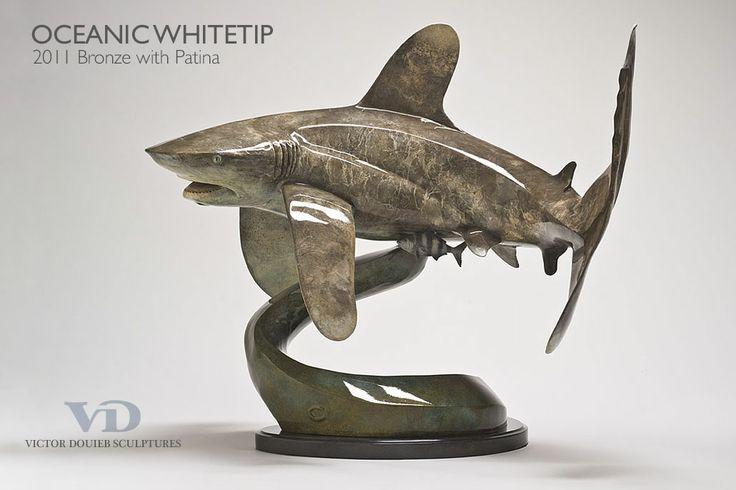 Oceanic whitetip in Bronze