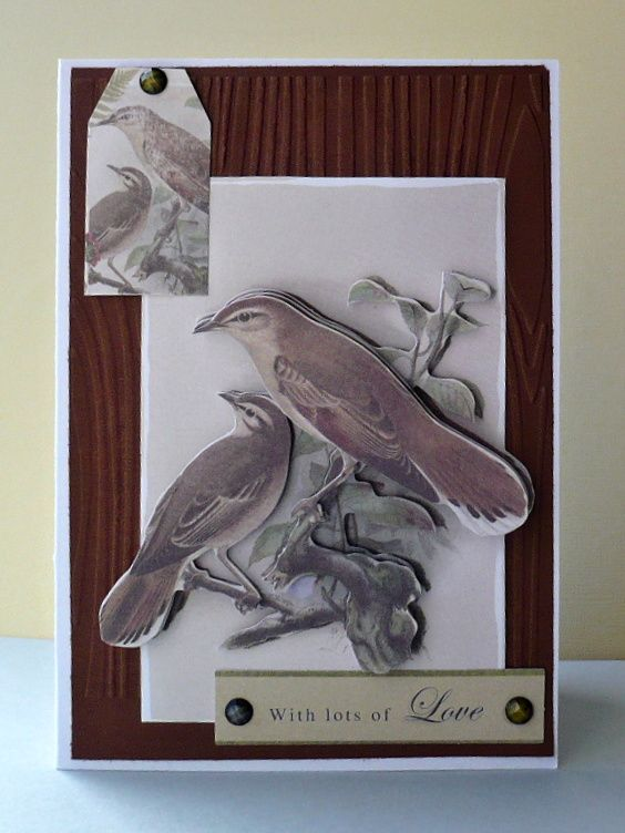 card - birds