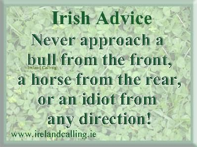 Irish Proverb: Never approach a bull from the front, a horse from the rear, or an idiot from any direction!