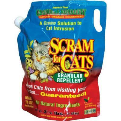 Natural Outdoor Cat Repellent Hate Strait Cats Pooping In My Garden Yard Garden Pinterest