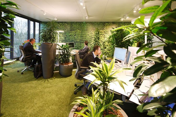 evolution design revitalizes the traditional workspace with easyCredit's new german HQ