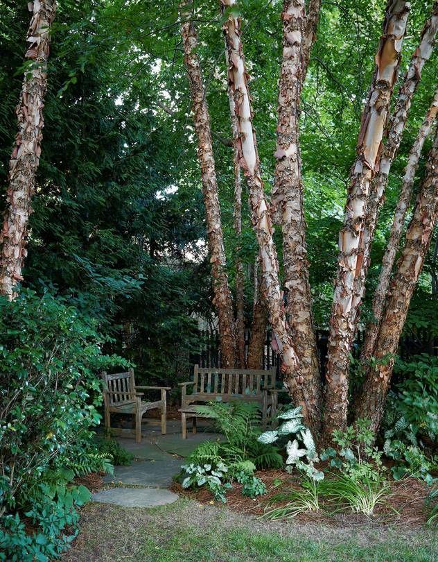 "secluded ""get-away"" area -- Lessons from Garden Designer Edmund Hollander's Own Unassuming Oasis - WSJ"