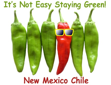 Oh New Mexico, your chiles are just the best