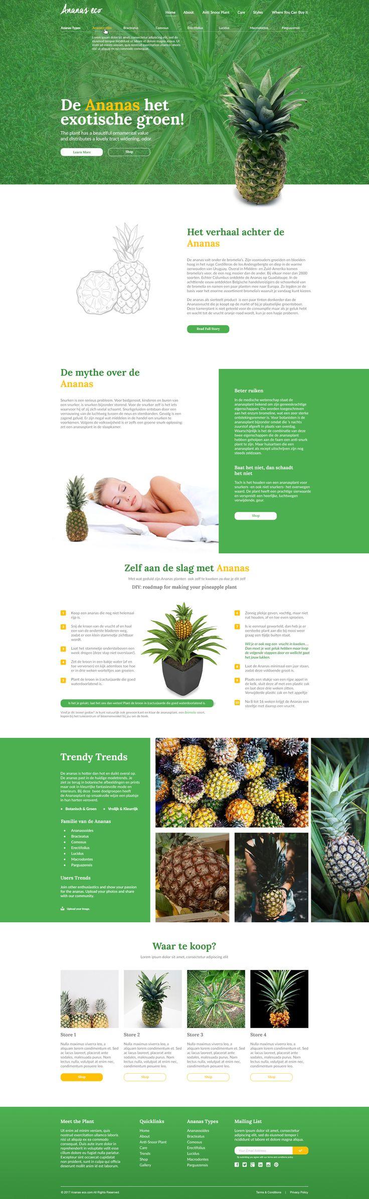 Ananas lovers website design.