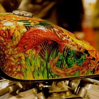 113 best images about bike tank on pinterest bikes for Cycling a fish tank