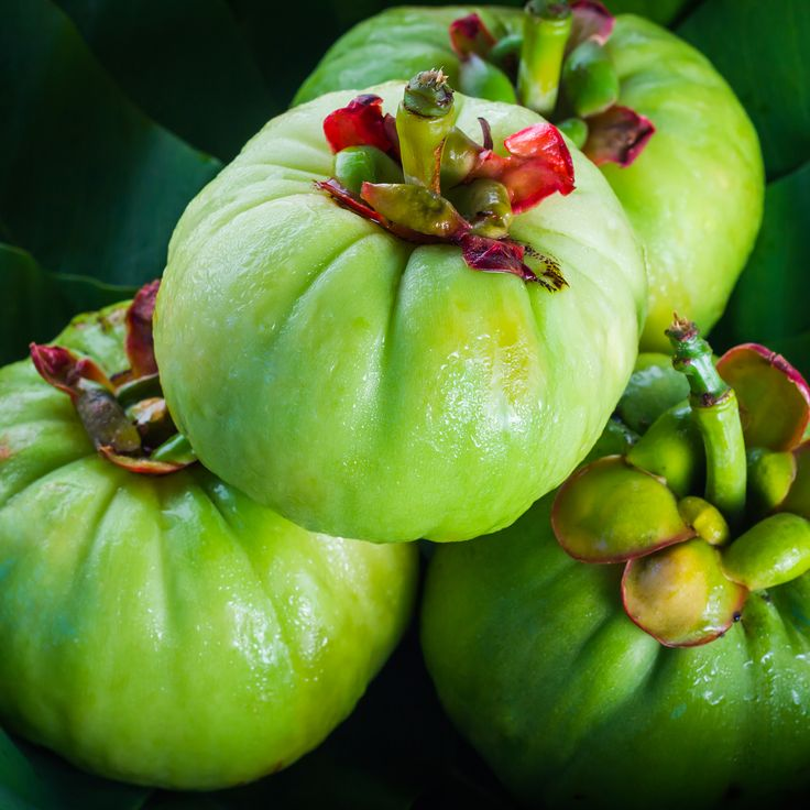 Garcinia cambogia 80 mg