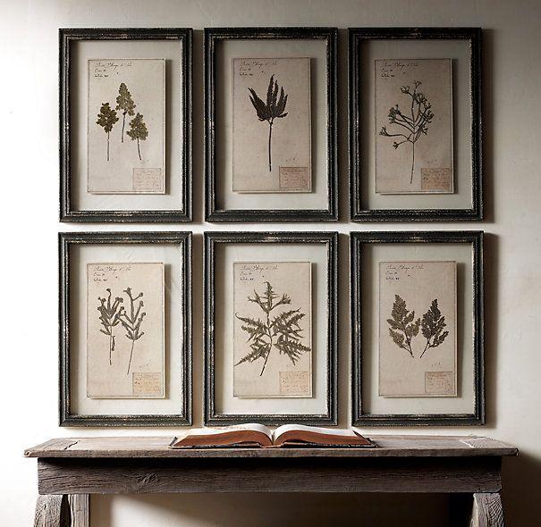 23 Best Botanical Pen Ink Drawings Images On Pinterest