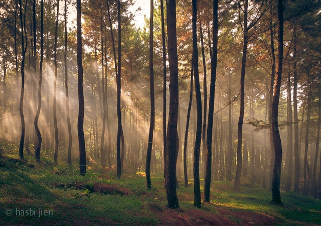 Gunung Pancar by bronky lee, via Flickr