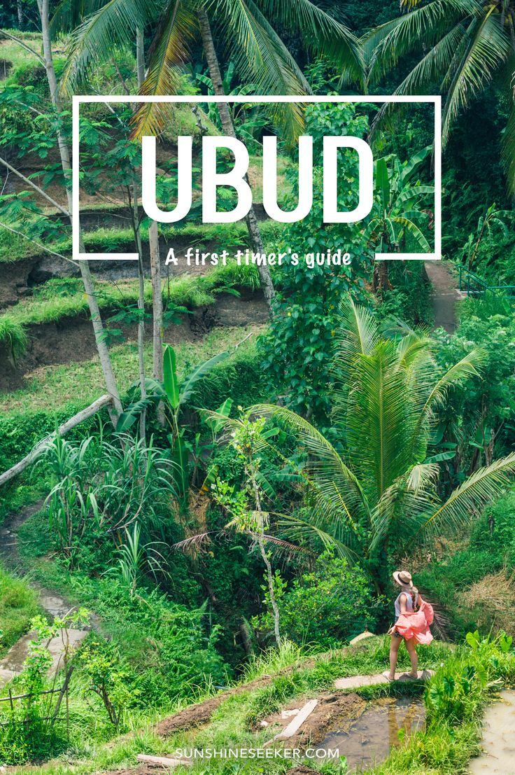 A first timer's guide to Ubud Bali