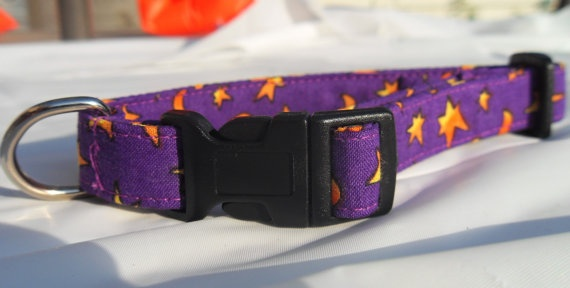 Halloween style purple and orange collar  small by CollarYourDog, $10.00