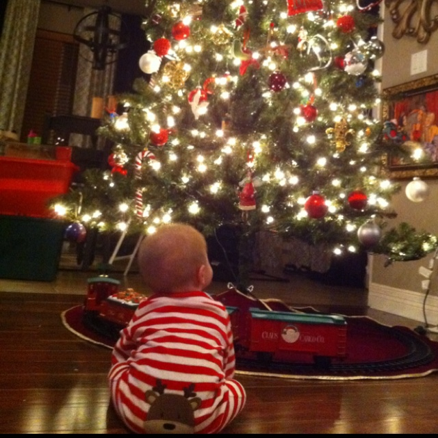 Our baby boy's first Christmas tree! | Our Casa | Pinterest ...