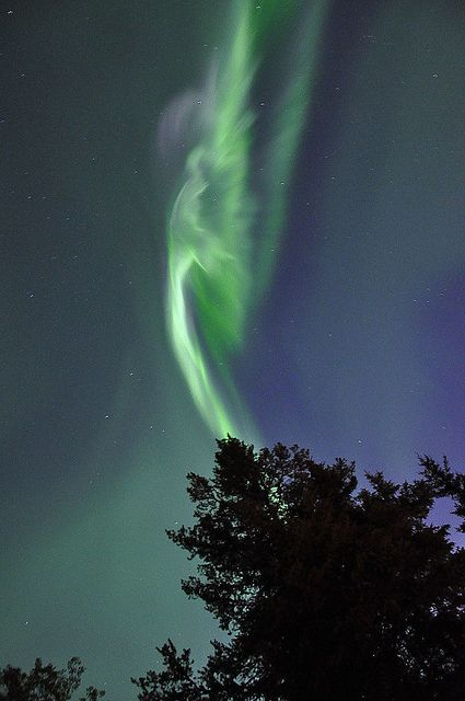 A shimmering aurora angel among the northern lights #angel #angelsightings