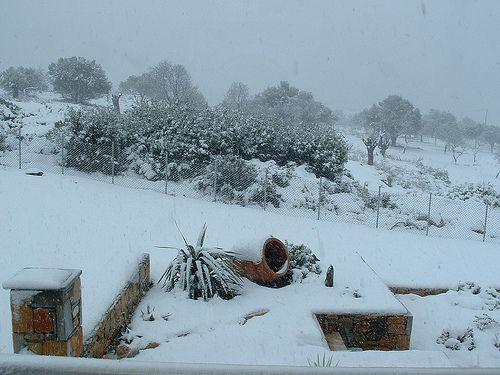 Alonissos winter