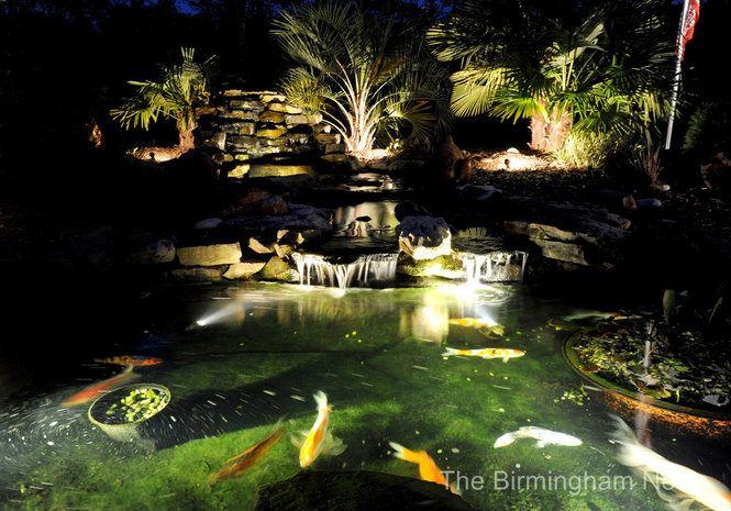 1000 images about led multi color landscape accent for Koi pond lights