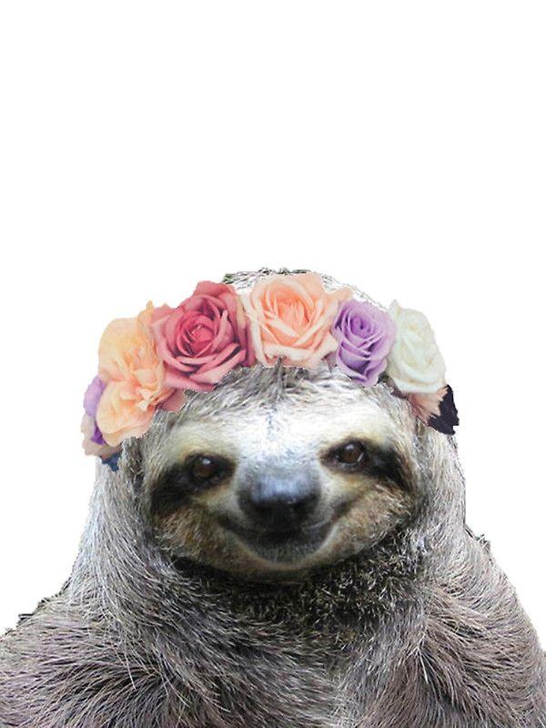Festival sloth ♡