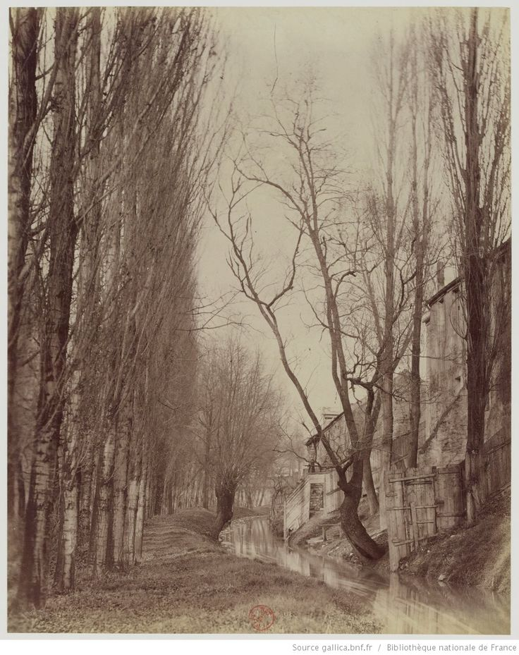 La Bièvre - B.d d'Italie : Disparue en 1891 - Aujourd'hui Rue Edmond Gondinet : [photographie] / [Atget]