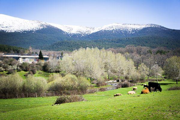 Disfrutar de la Sierra de Madrid con niños - Sonambulistas