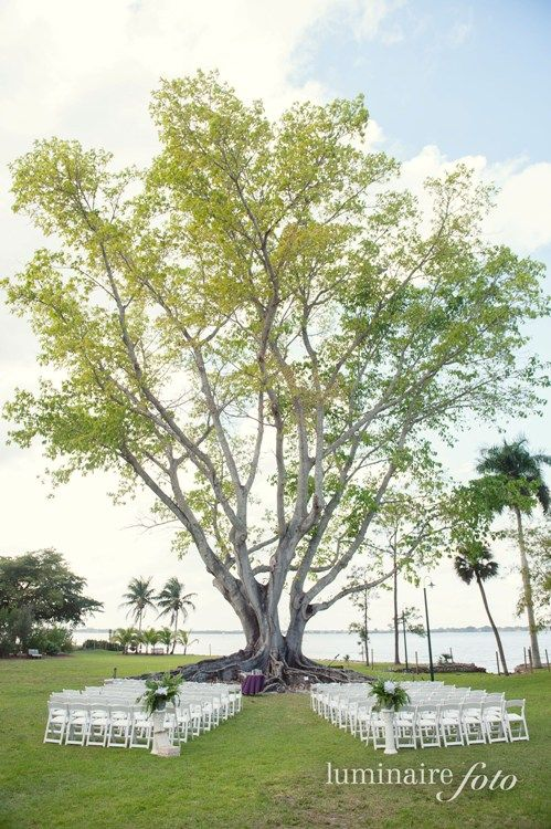 mysore fig tree wedding at  the edison ford in fort myers, fl