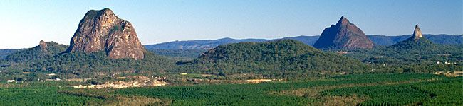 View of some of the Glass House Mountains taken from Glass House Mountains lookout in Beerburrum West State Forest.