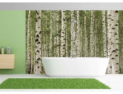 113 best images about beautiful wallpaper murals from for Beautiful birch tree wall mural