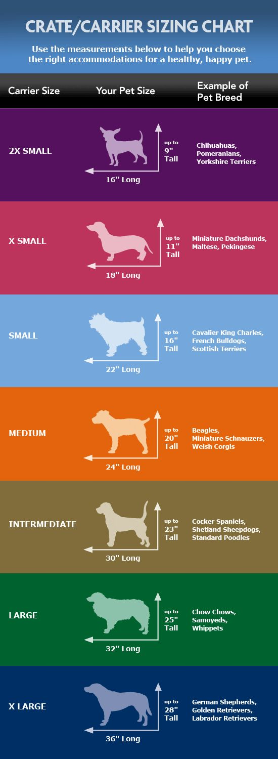 sizing chart for crate. - Tap the pin for the most adorable pawtastic fur baby apparel! You'll love the dog clothes and cat clothes! <3