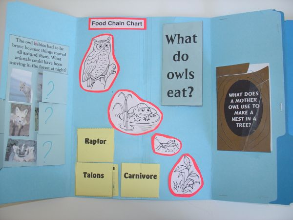 This turned mostly into a Unit Study on Owls, but we did use the Five in a Row title Owl Moon as well as HomeschoolShare title Owl Babies to implement our owl study. HSS also has Owl Moon lapbook g…
