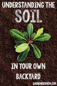 Understanding the Soil in Your Own Backyard | Gardenerspath.com