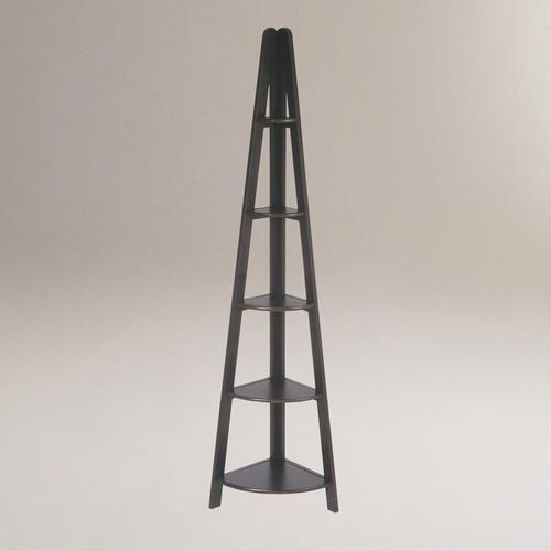 One of my favorite discoveries at WorldMarket.com: Dillon Corner Ladder Bookshelf