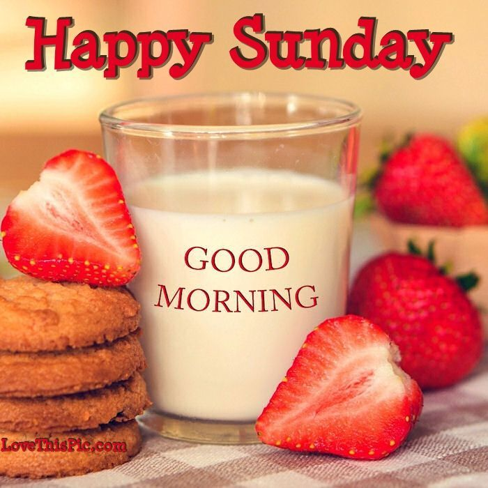 Good Morning And Happy Sunday Sms : Best monday through friday images on pinterest