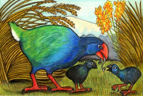 Takahe by lemurkat on DeviantArt