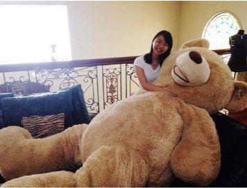 Massive Teddy Bear to Cuddle