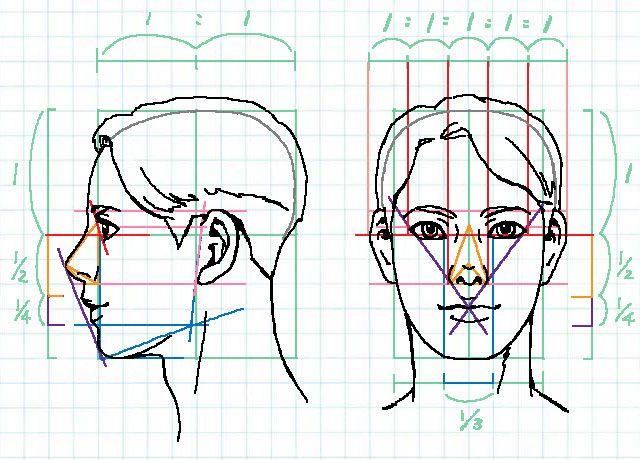 イラストでバランスのいい顔を描くには比率を知るのが近道 ラインスタンプ工房 イラスト上達のコツ一枚絵描き方研究室 顔を描く イラスト 頭 のスケッチ