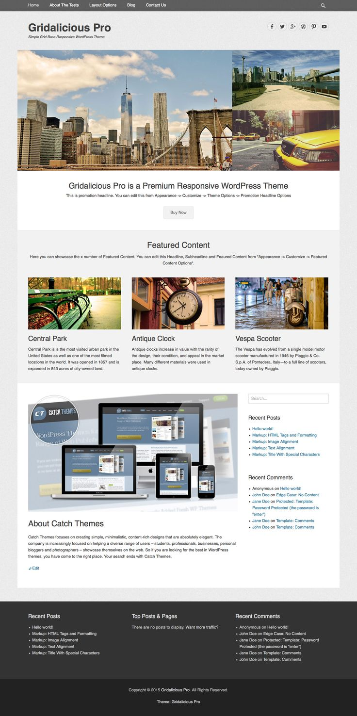 Gridalicious Pro is a Simple, Clean, Grid Responsive WordPress Theme which automatically adapts to the screen's size, ensuring that your content is always displayed beautifully no matter what device visitors are using. It is based in HTML5, CSS3 and WordPress Theme Customizer for real time customization.